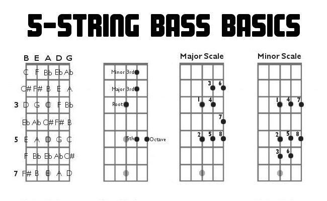 Five string bass guitar charts fretboard diagrams intervals scales music teaching lessons also rh pinterest