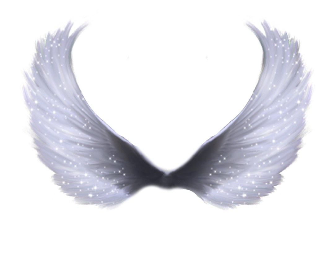 Download Glowing Transparent Angel Wings Png Png Gif Base Angel Wings Png Wings Png Wings