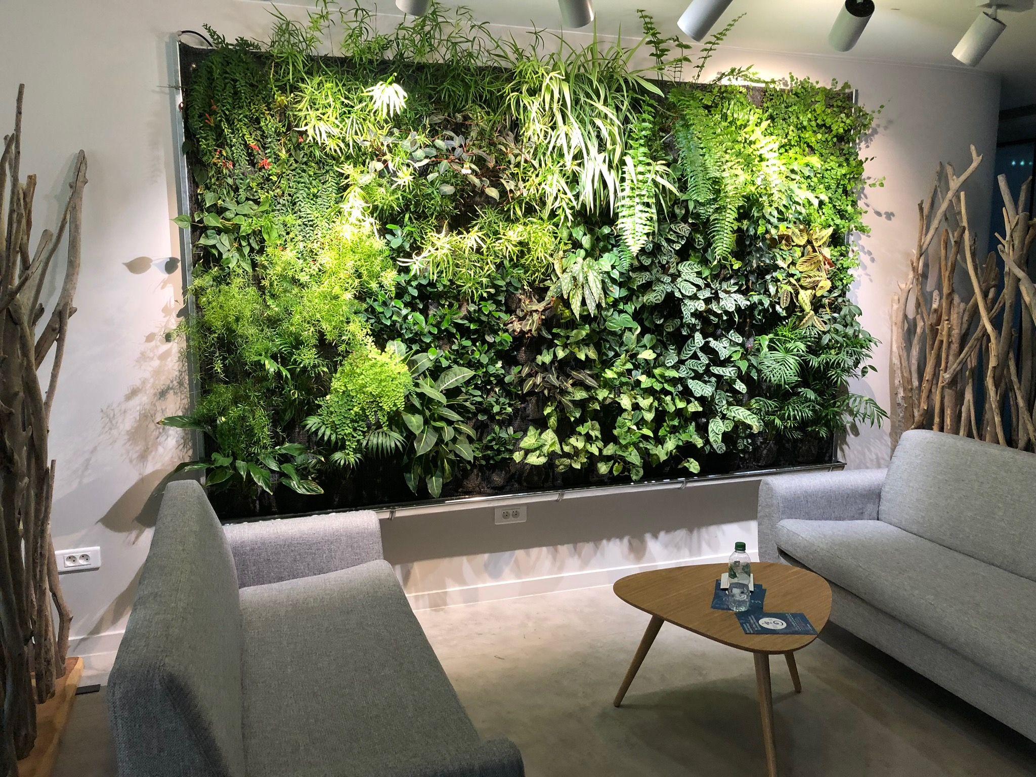 urban jungle, open space, idée décoration, mur végétal, plantes
