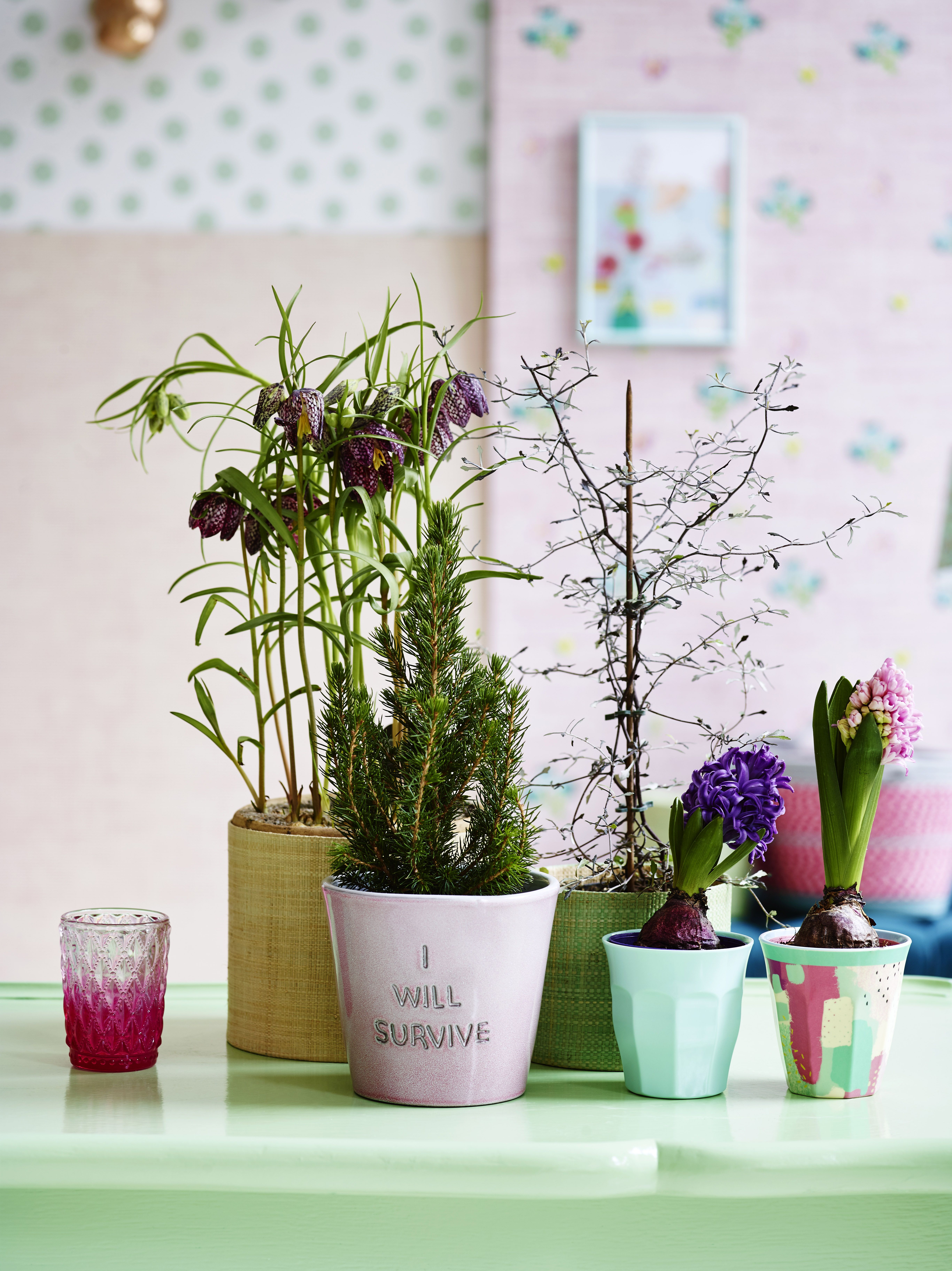 Ceramic Flower Pots Aw16 Home And Future Home Pinterest