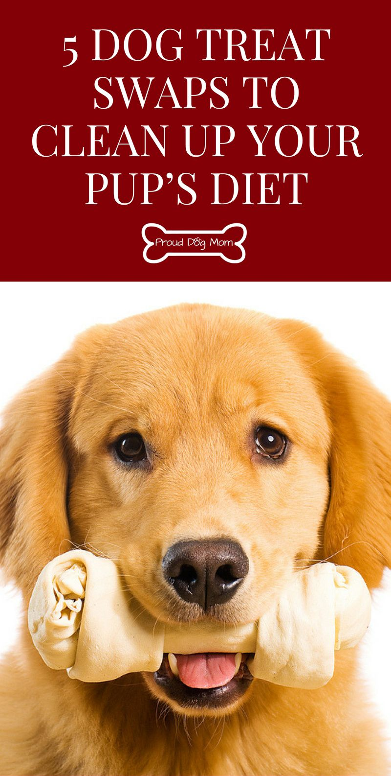 5 Dog Treat Swaps To Clean Up Your Pup S Diet Dog Clicker