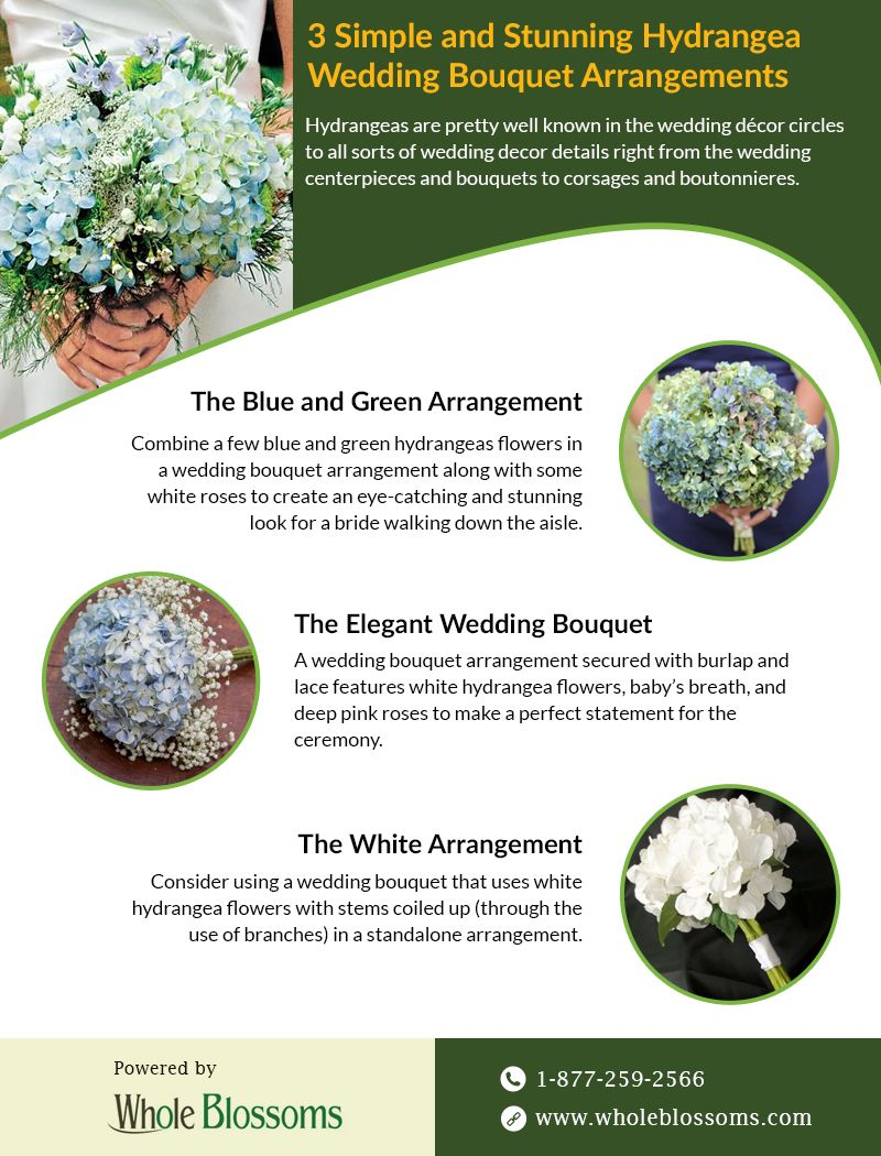 Hydrangea Gives An Elegant Look In Your Special Day This Infographic Provides You The Best Uses To Hydrangea Flower Flowers For Sale Hydrangea Bouquet Wedding