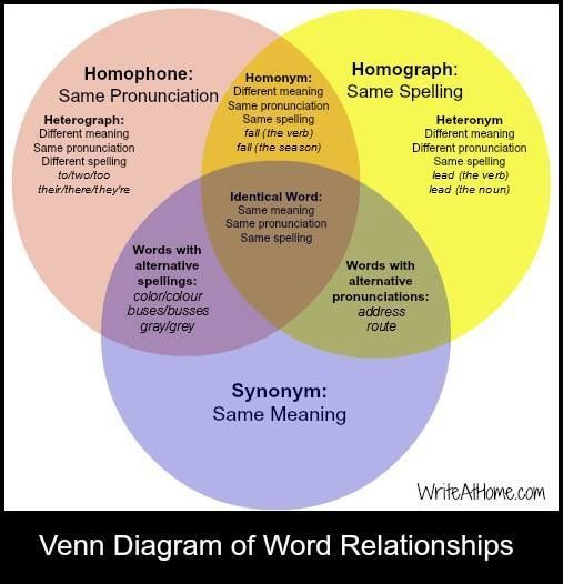 Venn diagram of word relationships homophones homographs venn diagram of word relationships homophones homographs synonyms ccuart Choice Image