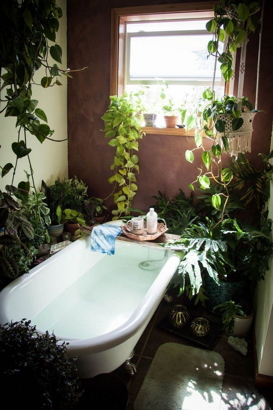 Decorating our homes with plants | Farm house living room ...