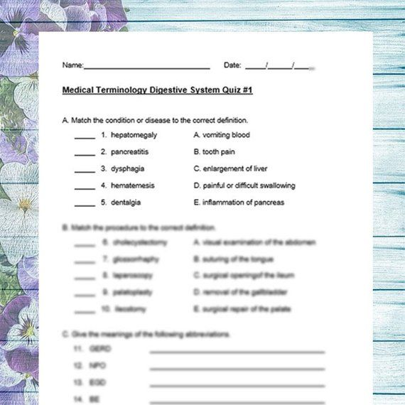 Medical Terminology Digestive System 3 Quiz Pack | Nursing