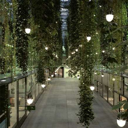 Urbane zucchini an der schlafzimmerwand die neue dimension von green home pinterest - Vertikaler garten innenraum ...
