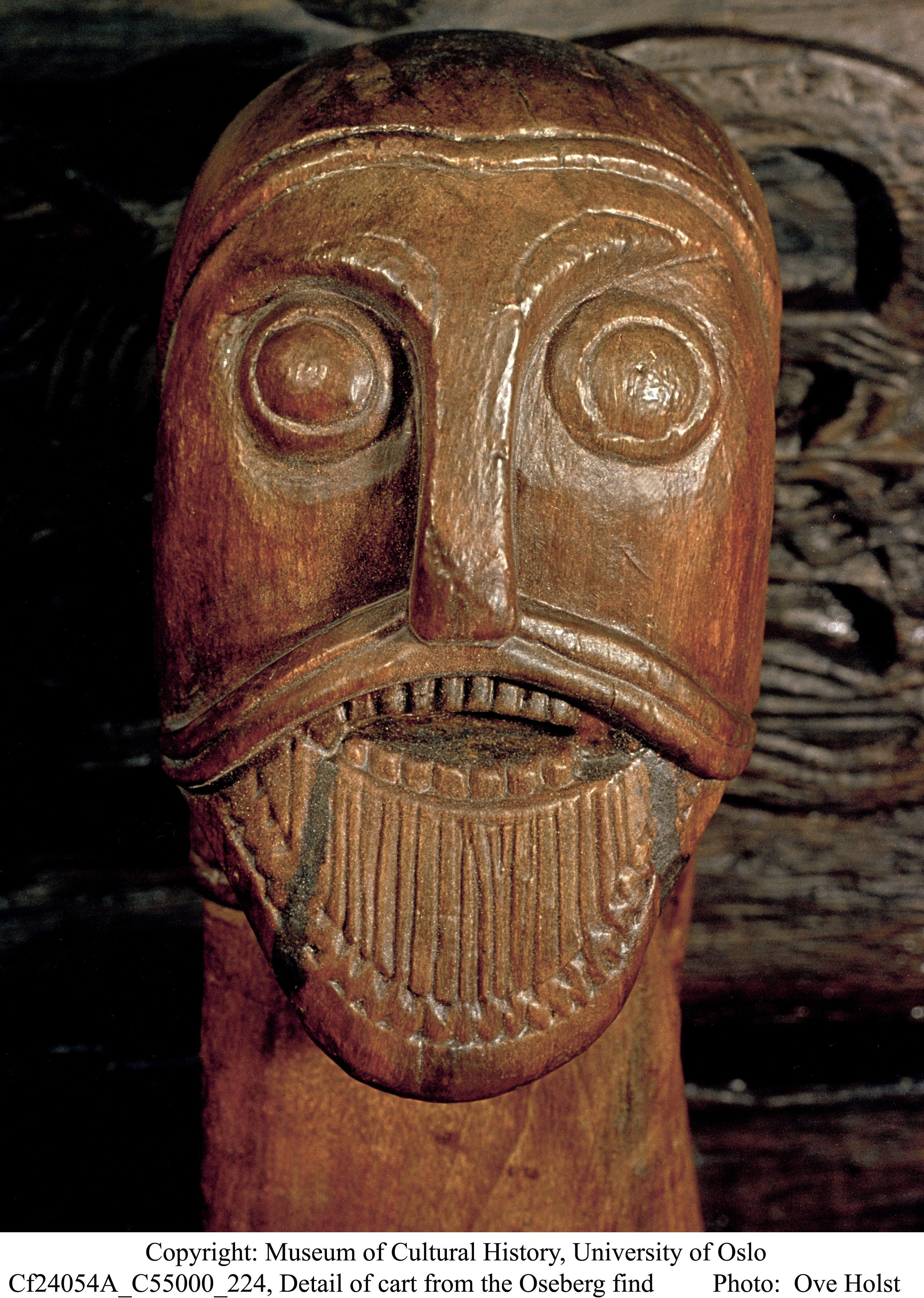 Carved head from oseberg ship burrial http unimus
