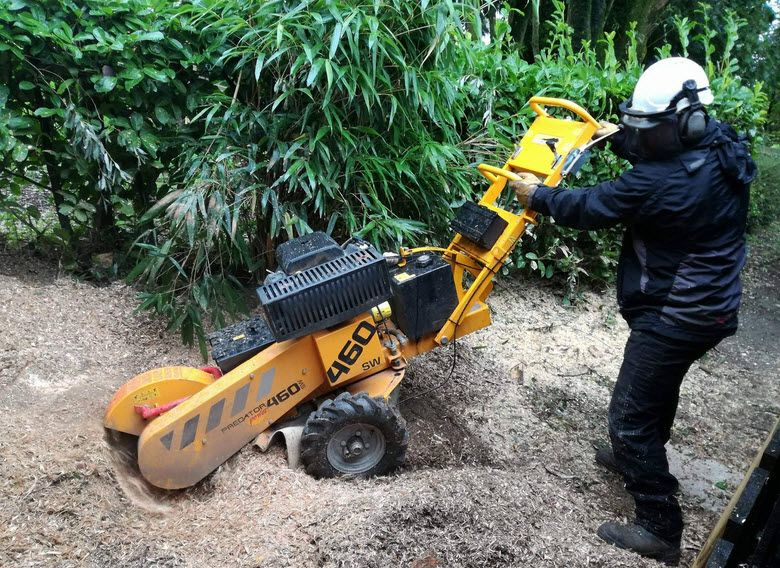 If you are looking for affordable stumpgrinding service