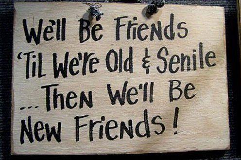 Best Friends Forever Meme Funny : Lol u2013 forever friends meme funny pictures funny stuff! :d