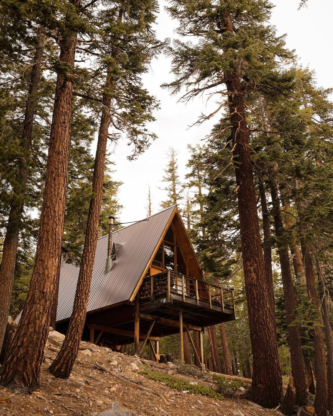 Two Hillside Cabins In The Trees By Feldman Architecture: A Frame Cabin, Tree House Decor, Cabin