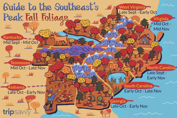 Where to See the Best Fall Color in the Southeast (With
