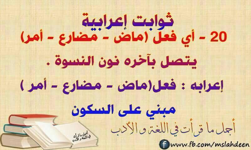 Pin By Mnmnjh97 On ارتقي بلغتك Arabic Language Arabic Quotes Language
