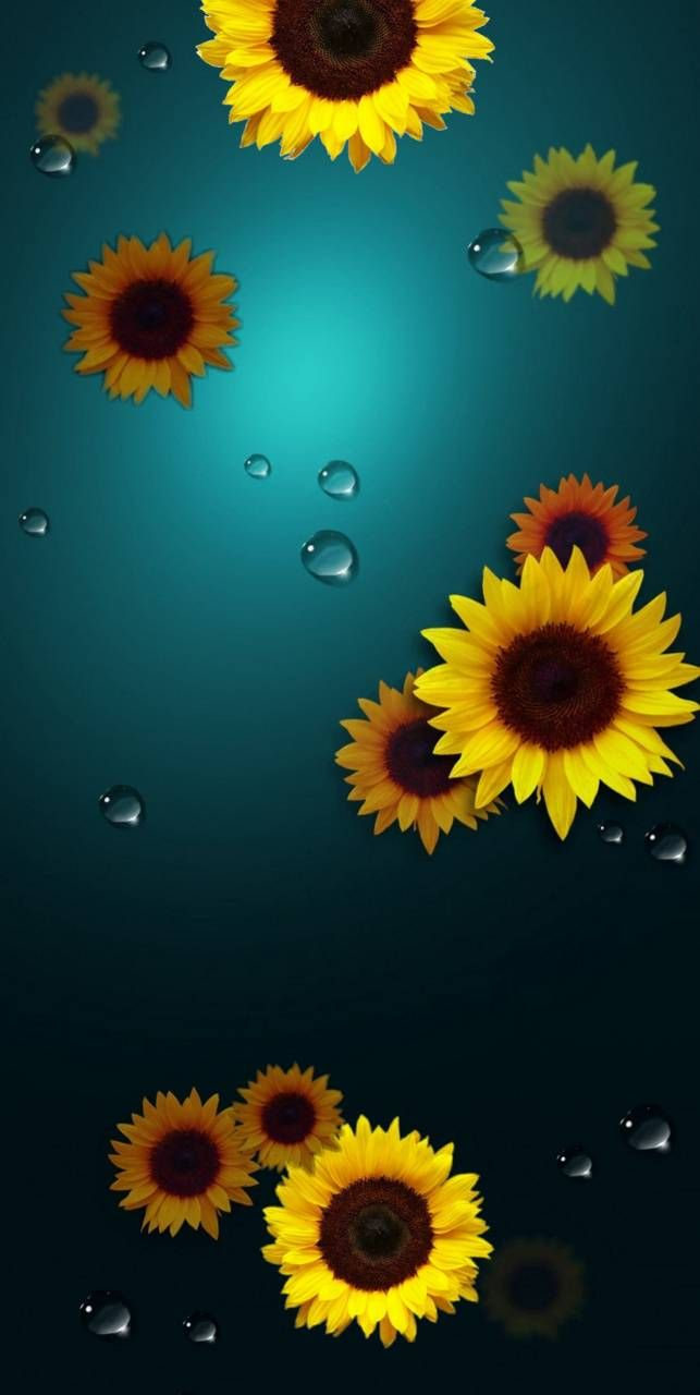 Note 10 sunflower Wallpaper by Tandi04 e5 Free on
