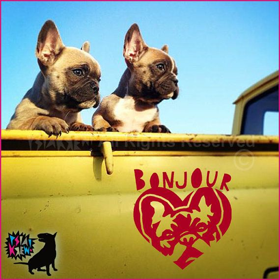 French Bulldog Bonjour wall decal | Frenchie Love ...