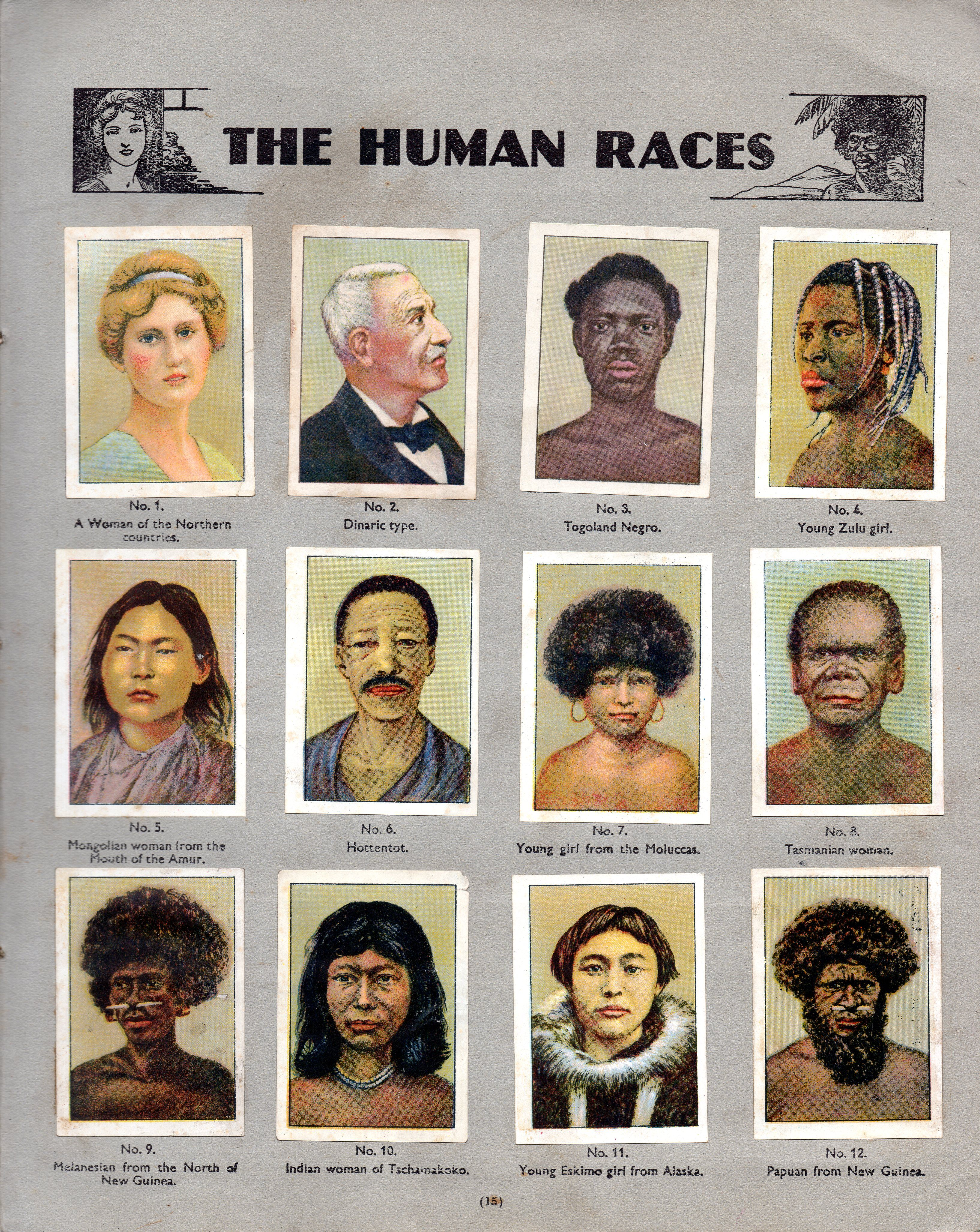 Races Of The World