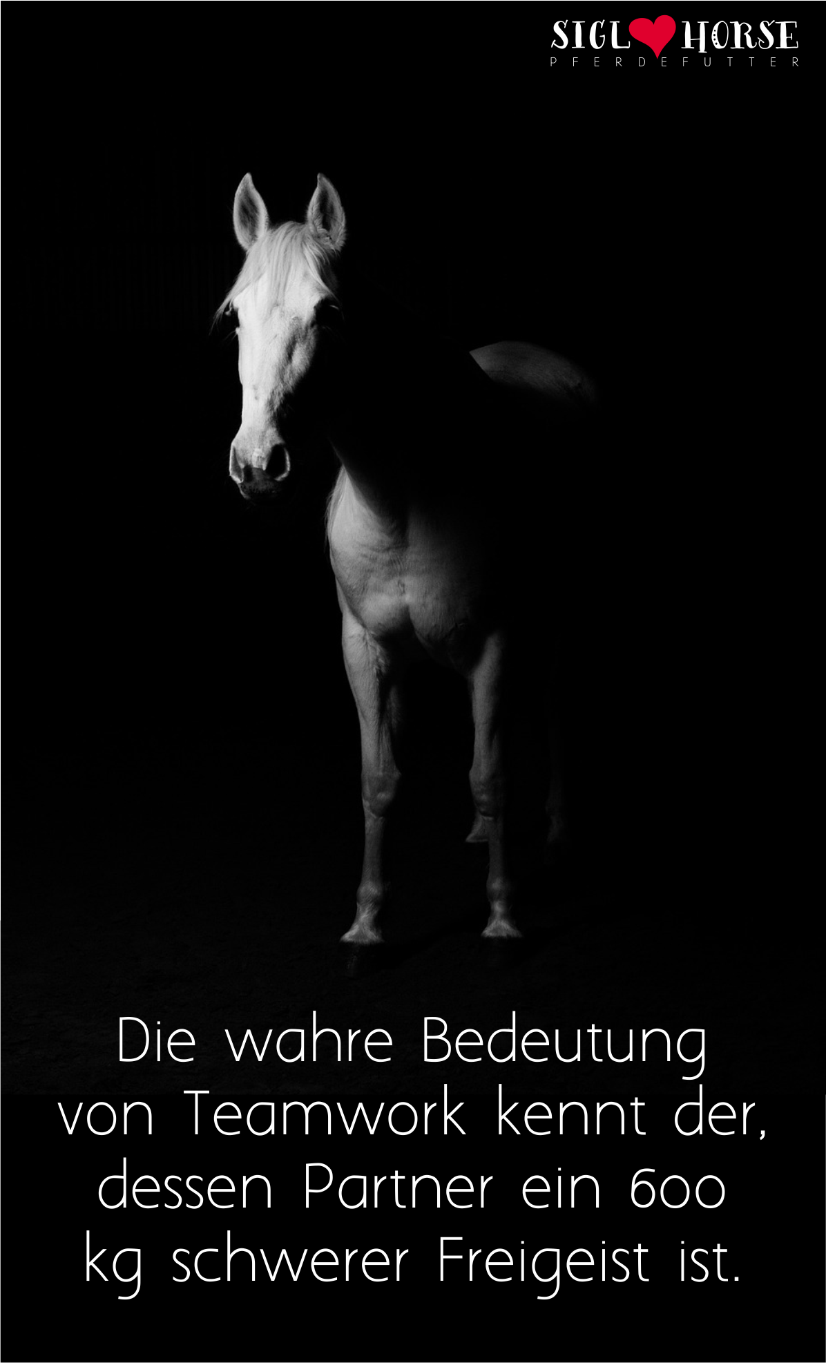 1000+ images about sprüche on pinterest | karma, dramas and happy