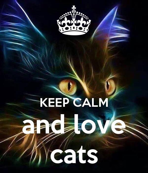 keep calm and love cats katzen pinterest katzen. Black Bedroom Furniture Sets. Home Design Ideas