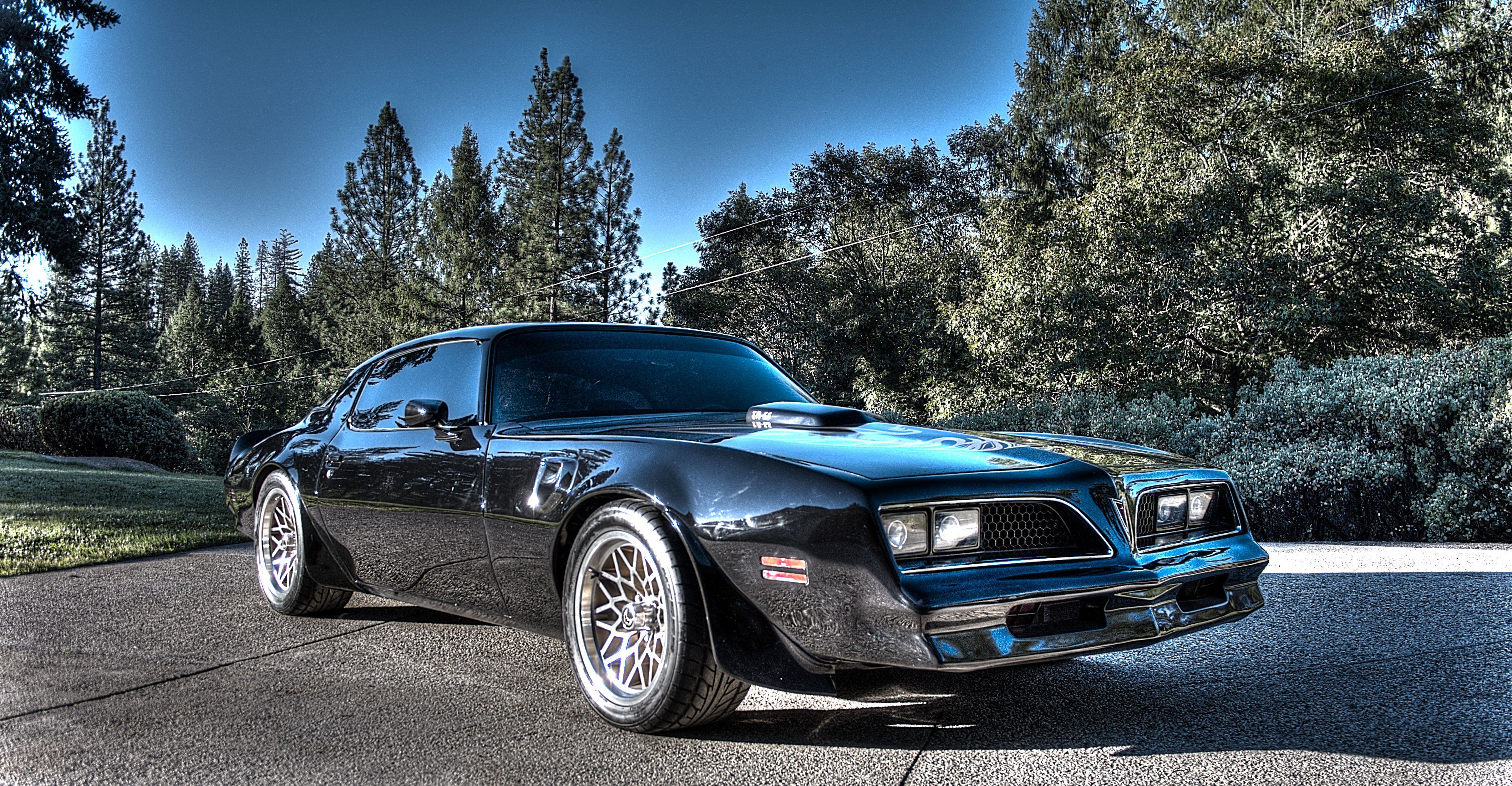 1977 Trans Am Dhc Black Out Edition Darth Vader Mirror Black More Pics Cool Car Pictures Pontiac Firebird Trans Am Amazing Cars