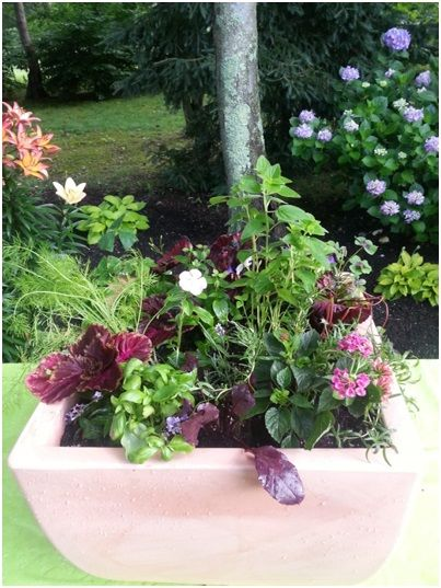 A Vegetable And Herb Planter Pretty Enough For The Front