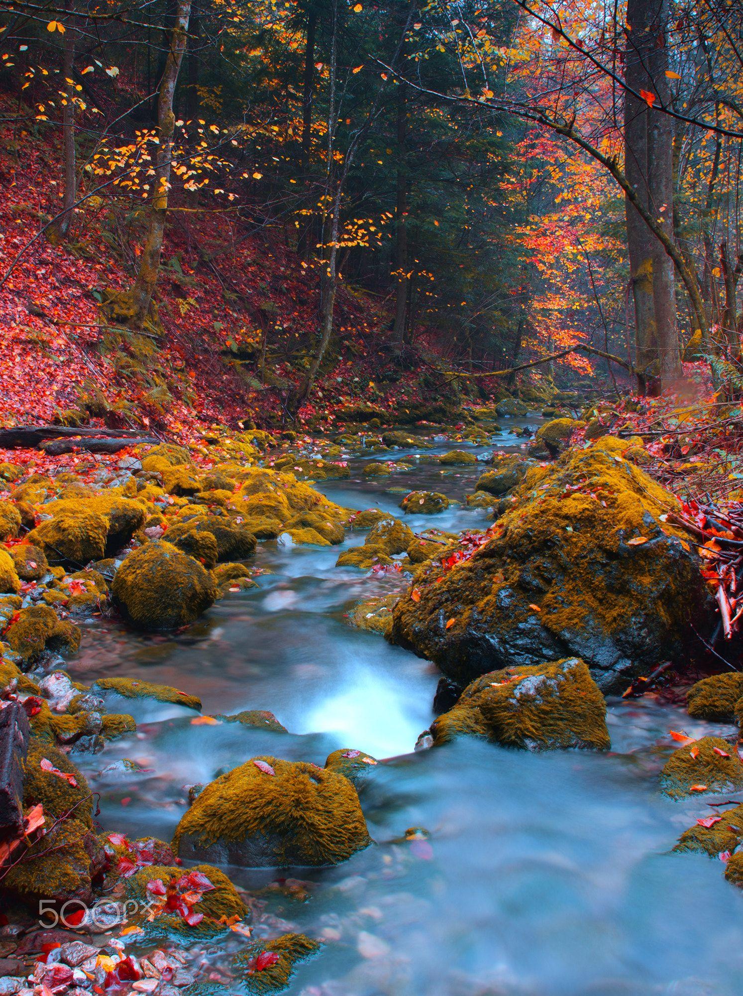 Mountain River Mt Konjuh Zlaca River Banovici Bosnia Cool Landscapes Landscape Scenery Autumn Landscape