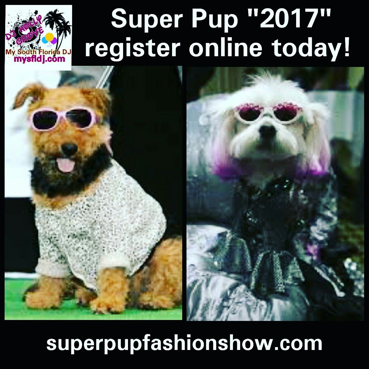 Super Pup 2017 put on by my South Florida DJ Services is