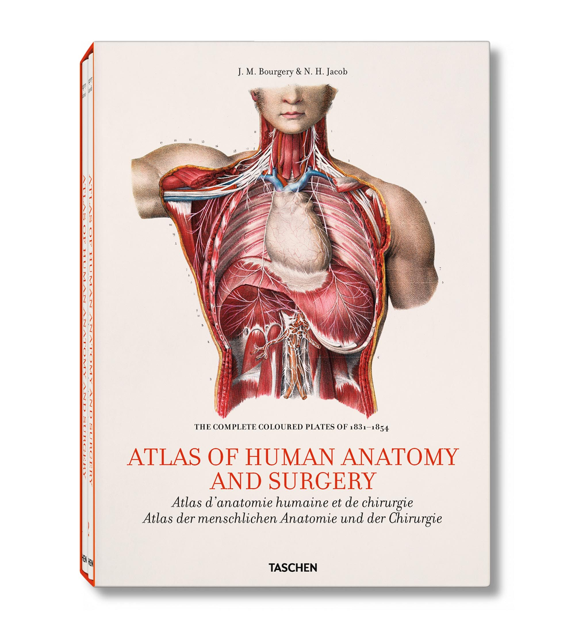 Atlas of Human Anatomy and Surgery TASCHEN 9783836508650/3 img1 ...
