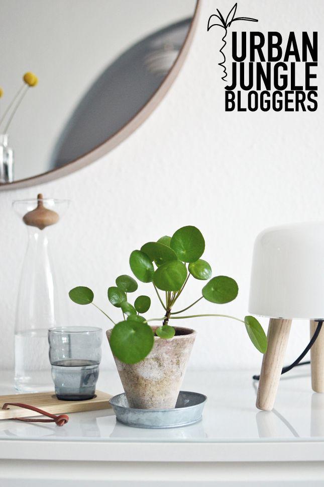 happy interior blog urban jungle bloggers green social. Black Bedroom Furniture Sets. Home Design Ideas