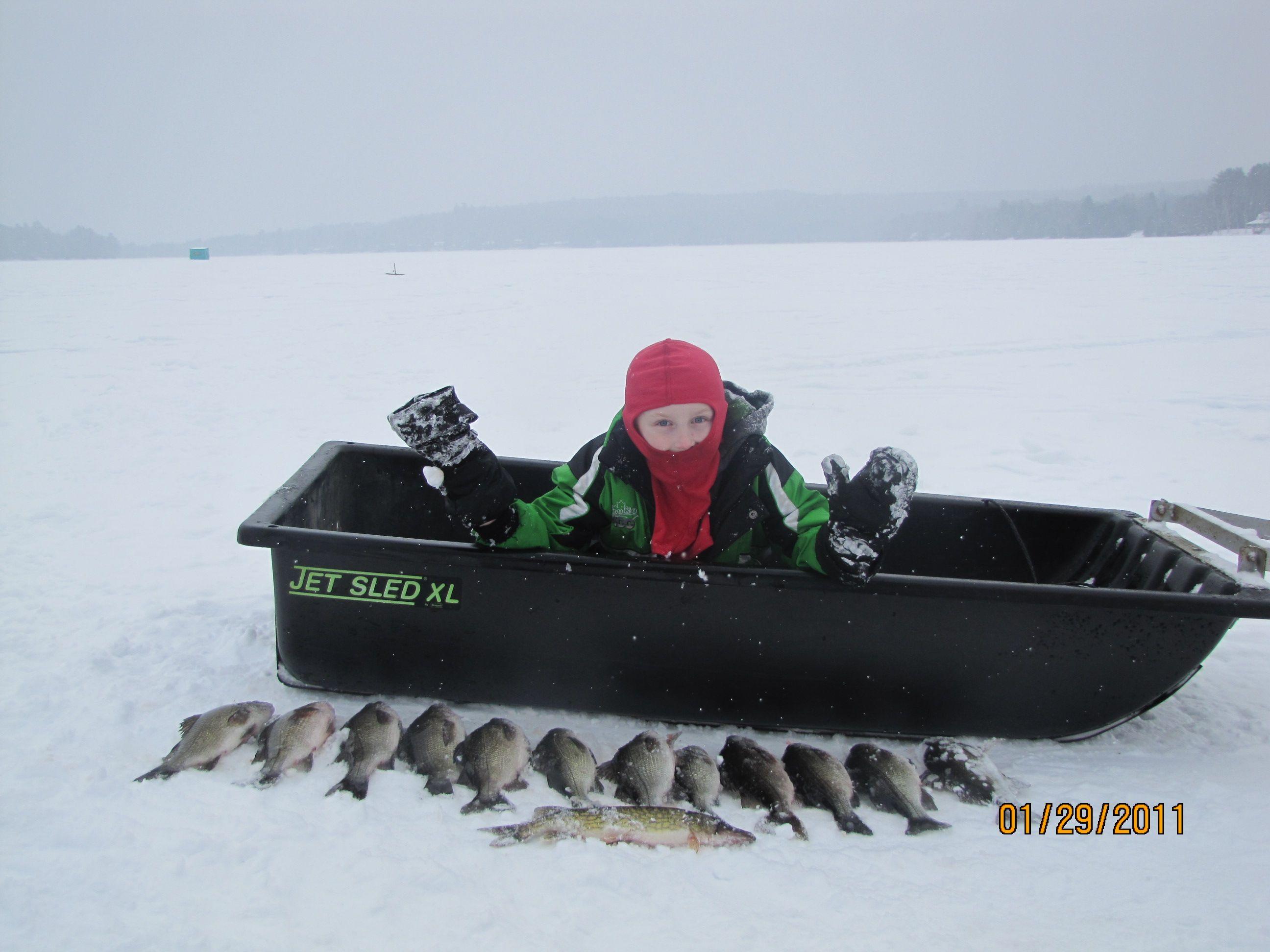 White Perch And Pickerel Wesserunsett Hayden Lake Maine