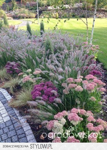 Photo of Ornamental grass and flower garden idea.                              …