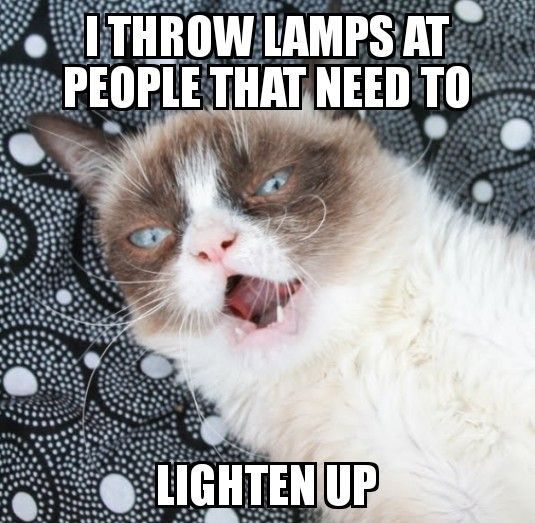 Photo of Grumpy cat #catsfunnysayings