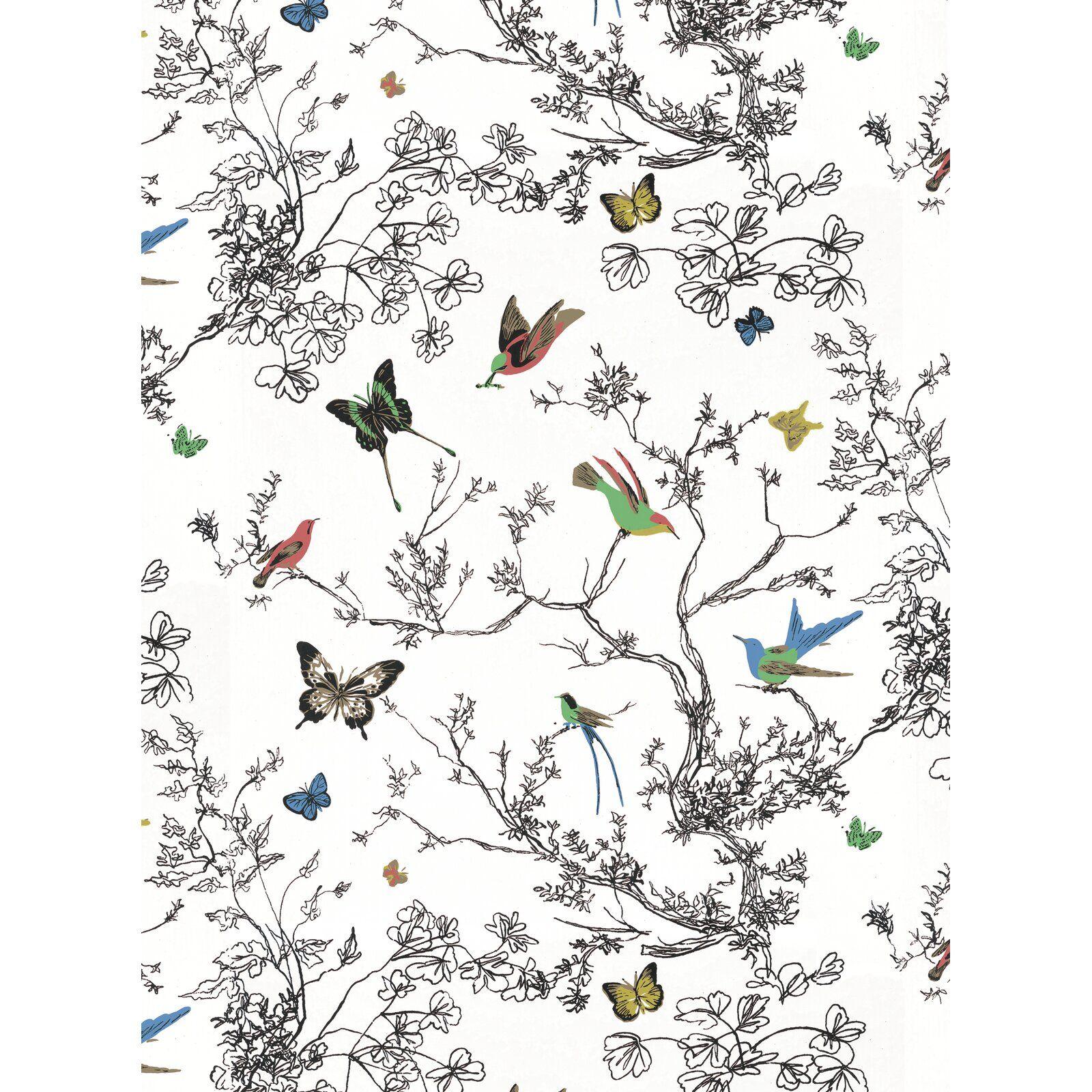 """Birds & Butterflies 15' L x 27"""" W Wallpaper Roll in 2020"""