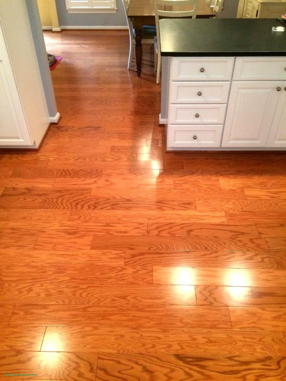 Best Wood Flooring For Dogs Best Wood Flooring Flooring Wood