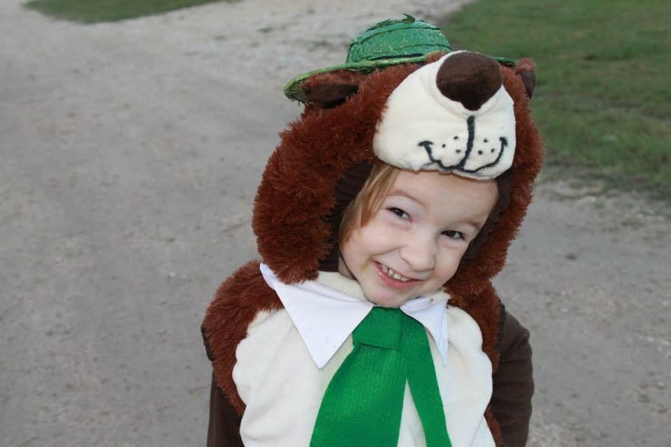 Yogi Bear Diy Halloween Costume For My Toddler Found A Dog Costume