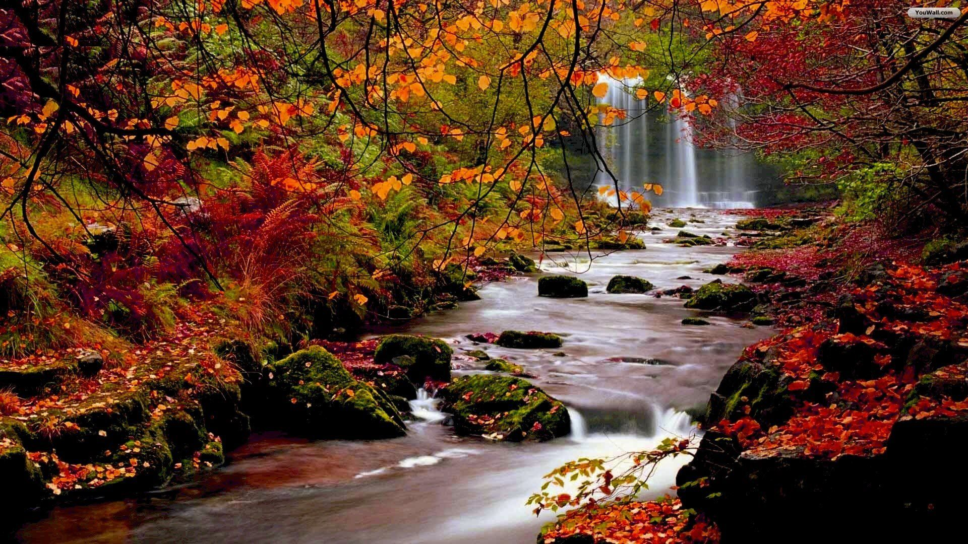 Fall images YouWall Autumn Forest Waterfall Wallpaper