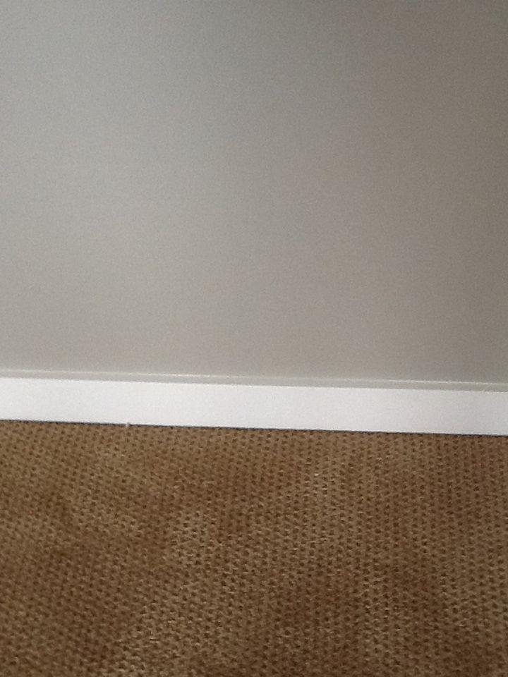 Anew Gray Walls White Trim Tan Carpet Guestroom