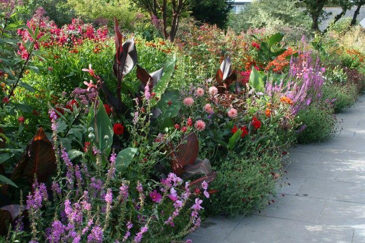 Garden Visit Helen Dillon S Garden In Dublin Gardenista Garden Visits Irish Garden Garden Inspiration
