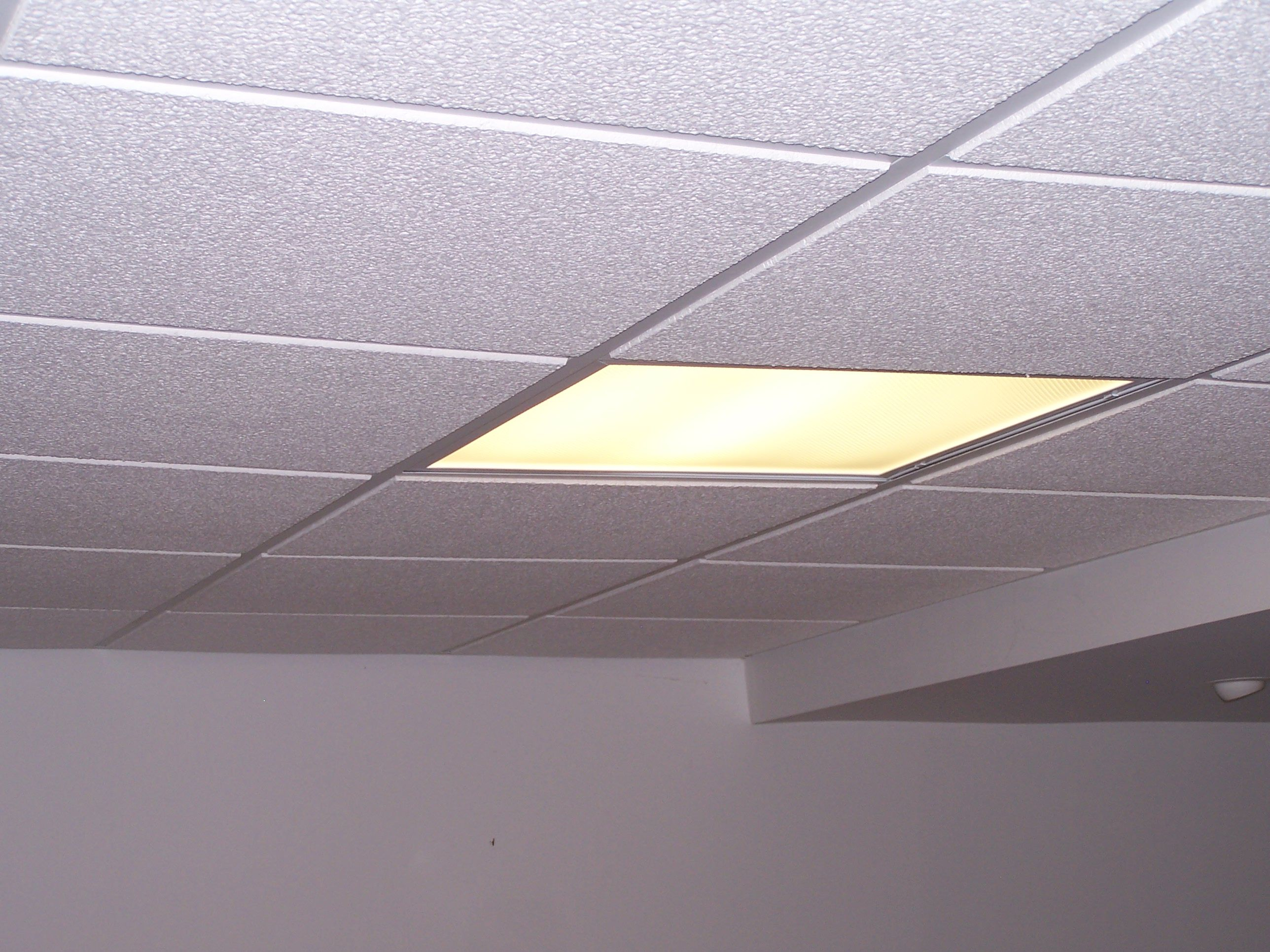 24 egg crate ceiling tiles httpcreativechairsandtables 24 egg crate ceiling tiles dailygadgetfo Images
