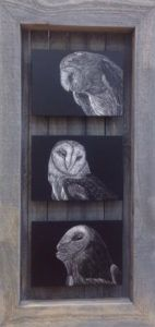 Scratchboard Art by Chandra Jennings, member of Gallery Uptown located in Grand Haven, Michigan.