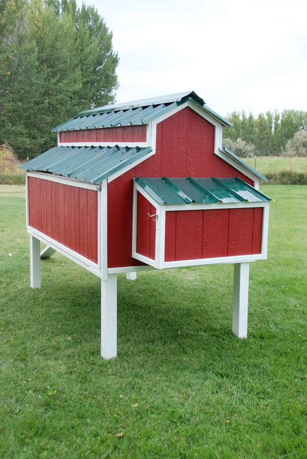 Free plans for an awesome chicken coop the home depot for Cute chicken coop ideas
