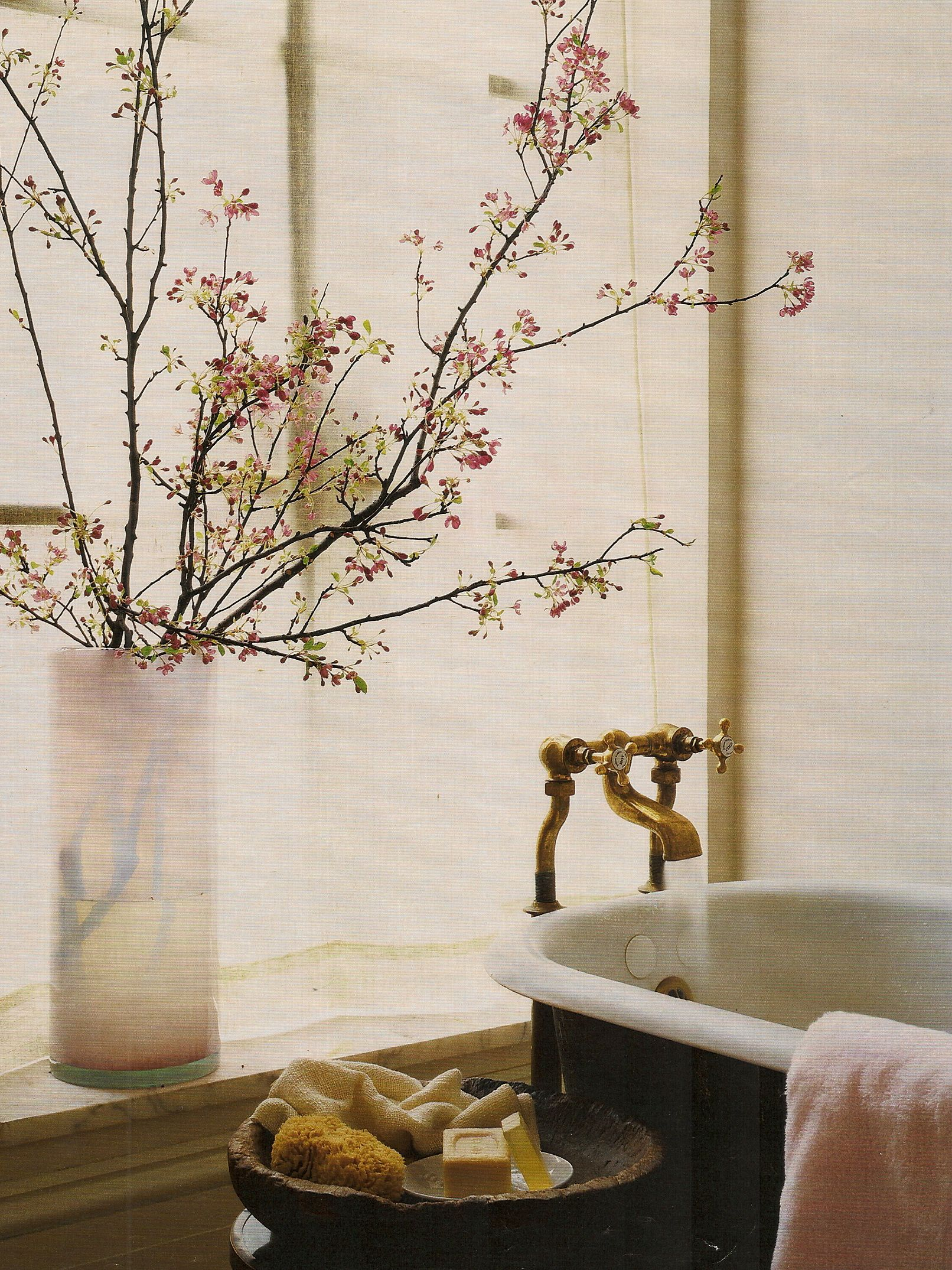 MSL: Bathtub with blossoming branches.  Me there now, please.