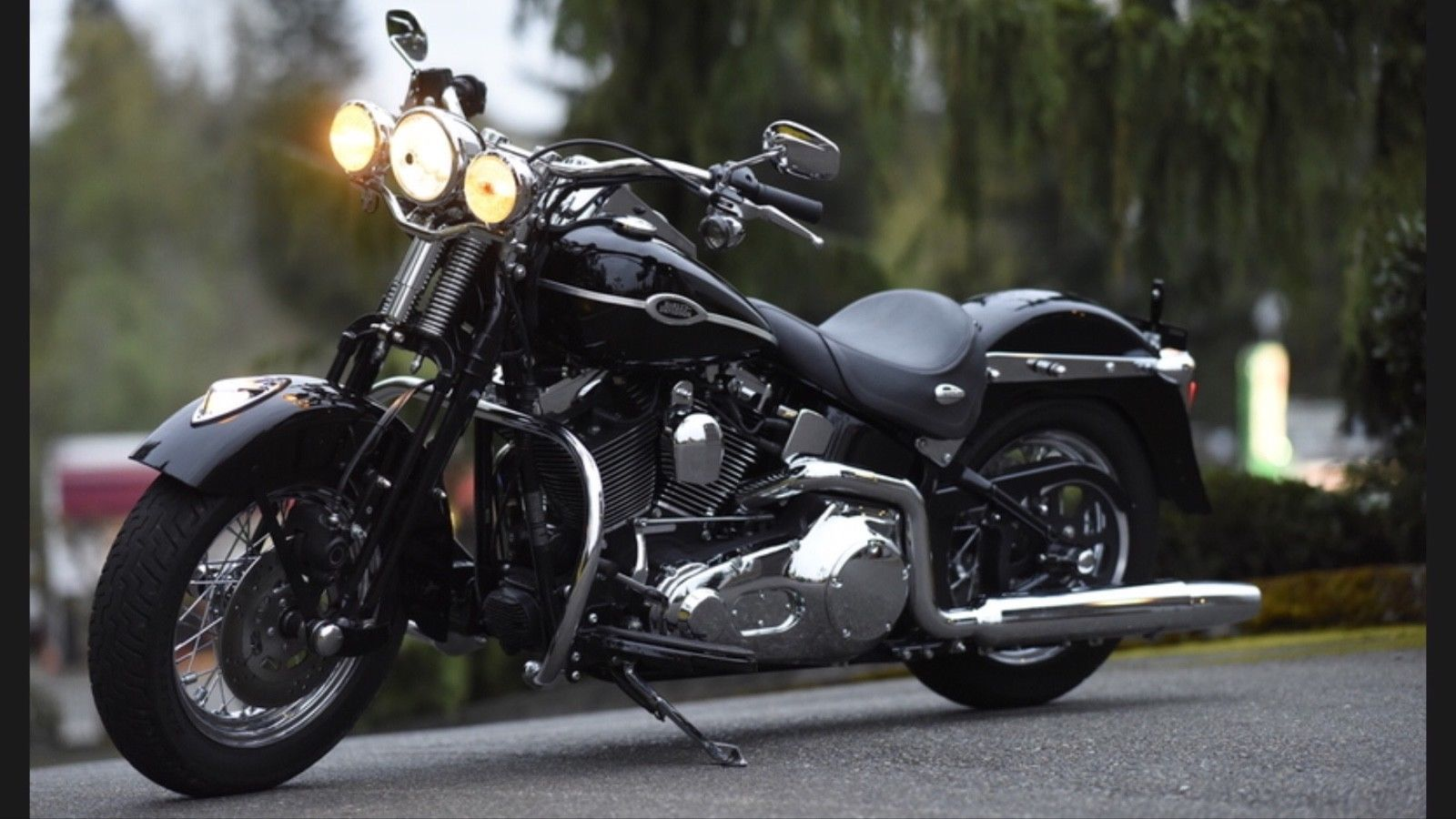 Harley-Davidson Softail | Harley davidson