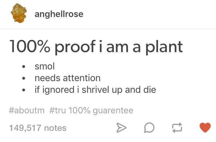 21 Jokes About Plants That Will Make You Love And Fear Them In 2020 Plants Jokes Different Plants