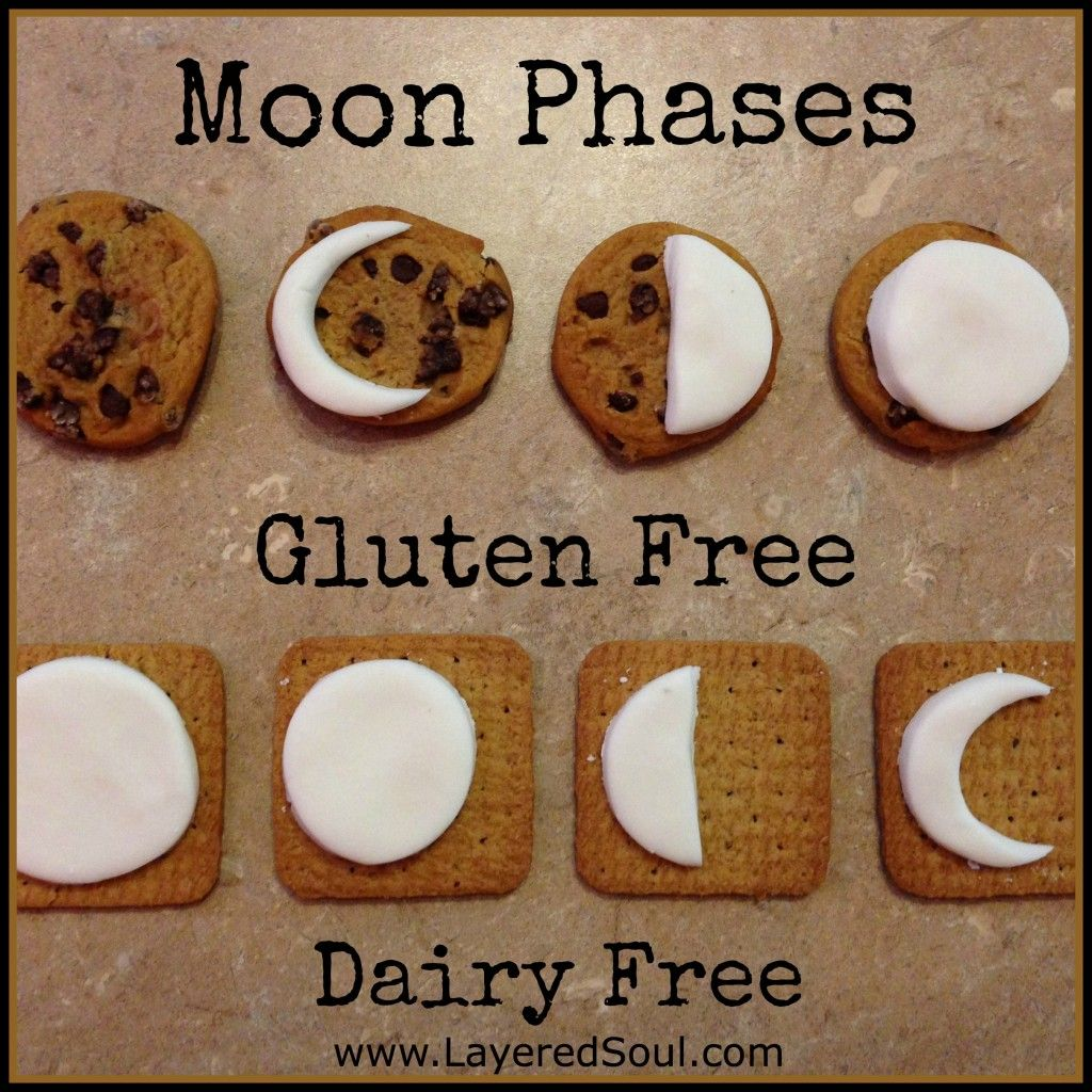 3D Moon Phase Projects for Kids