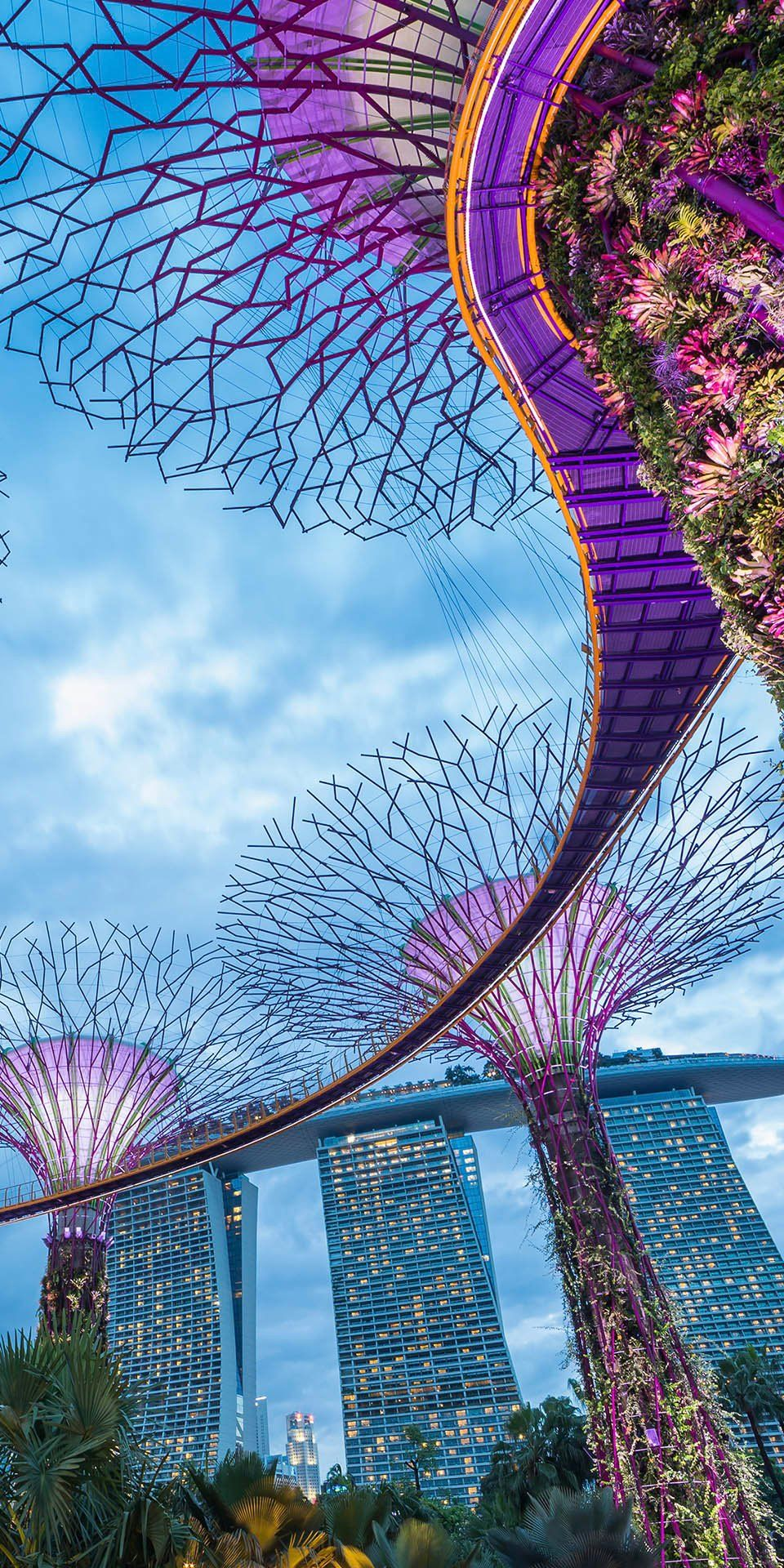 Singapore Supertree Grove at Gardens by the Bay offers