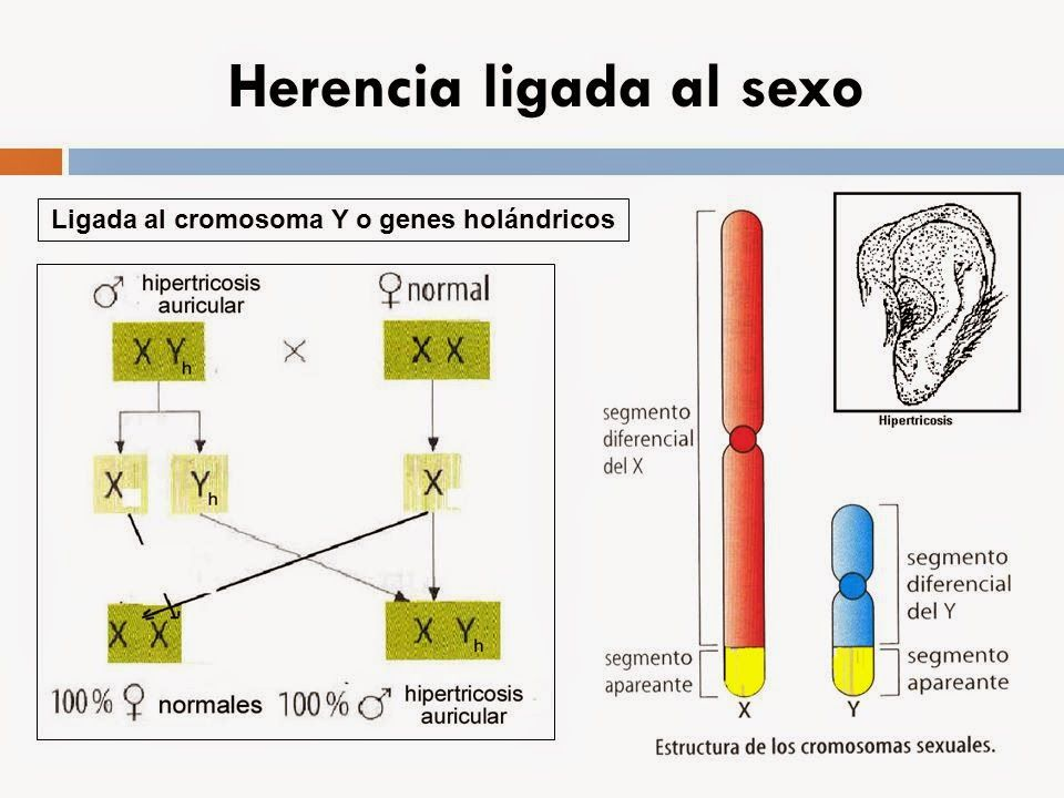 Pin En Genetica