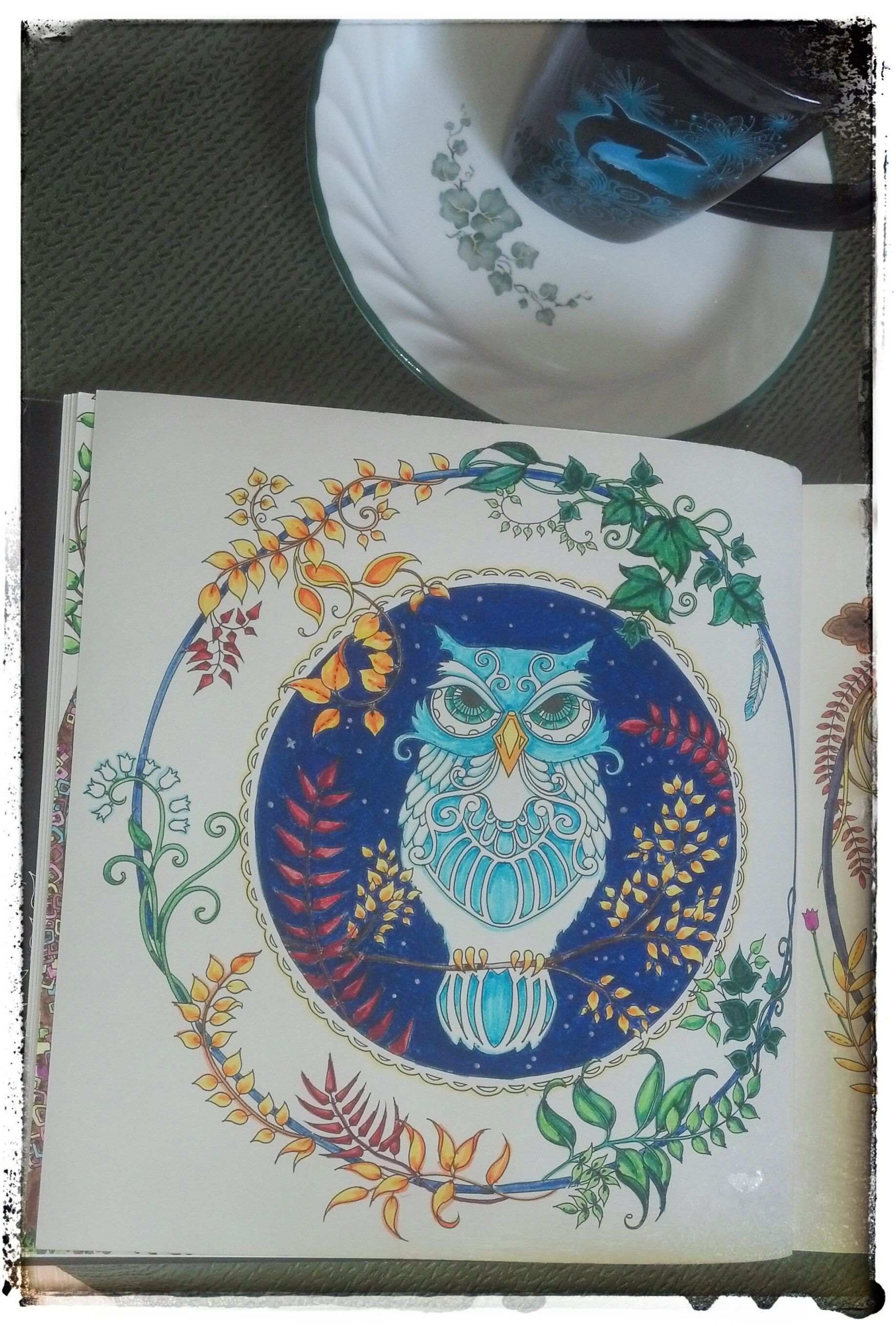 Adult Coloring Books This Is From Johanna Basfords Enchanted Forest I Like To Use