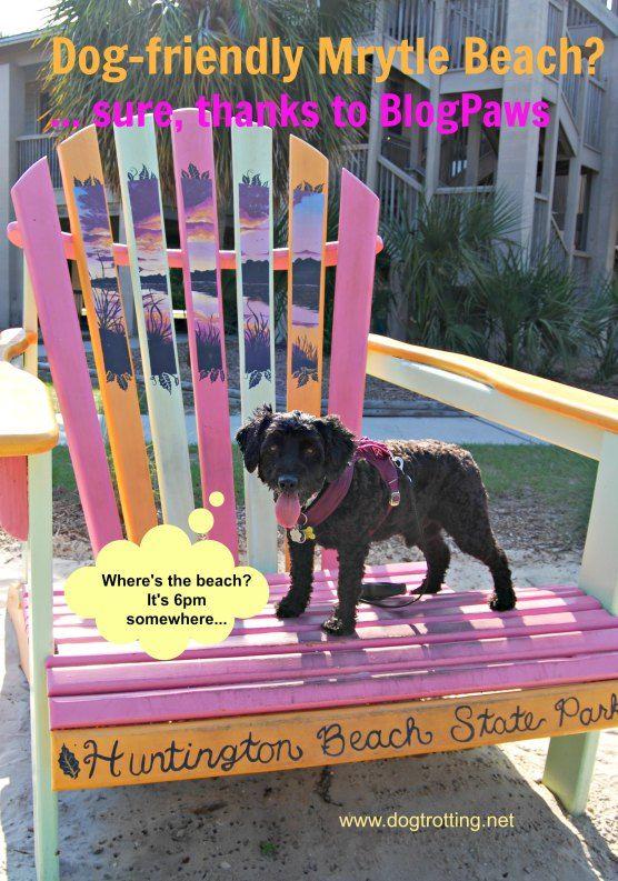 Myrtle Beach Pet Friendly Vacation Rentals North Myrtle Beach Vacation Rentals North Myrtle Beach Vacation Myrtle Beach Vacation