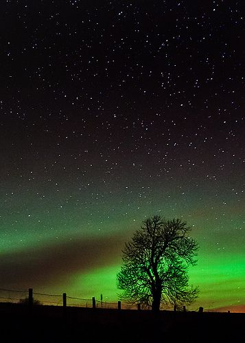 Aurora glow, Alford, Scotland. Photo by Kenny Muir