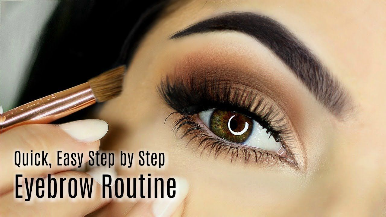 Beginners Eye Brow Makeup Tutorial   Parts of the Eye Brow ...
