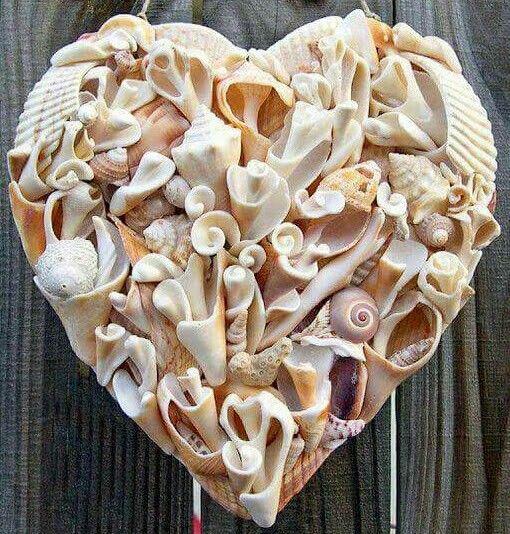 #Coração♡ * Conchas *